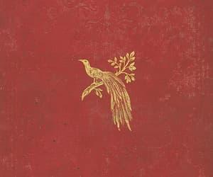 bird, phoenix, and theme image