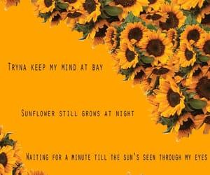 background, Lyrics, and orange image