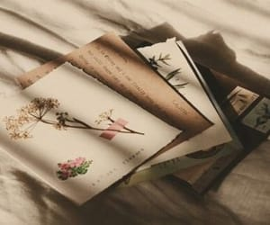 aesthetic, beige, and flowers image