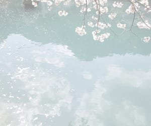 flowers, pastel, and water image