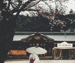 japan, tokyo, and travel image