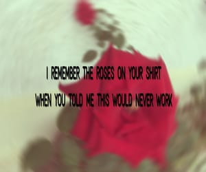 breakup, roses, and song image