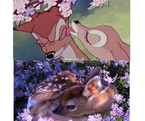 animals, bambi, and disney image