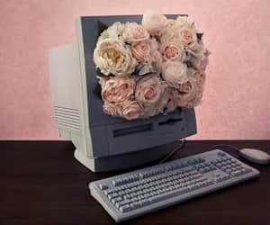 flowers, pink, and computer image