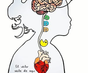 frases, heart, and miedo image