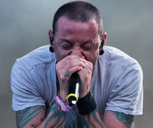 concert, linkin park, and chester bennington image