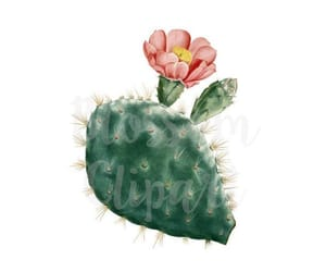 cactus, etsy, and flower image