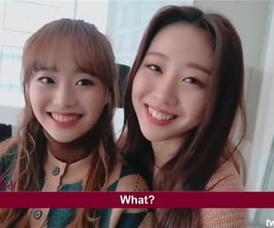 icons, matching, and yves image