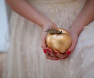 apple, greek mythology, and gold image