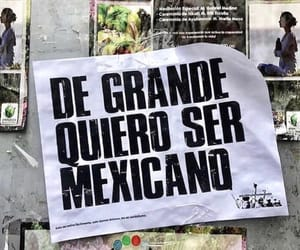 frases, mexicano, and mexicans image