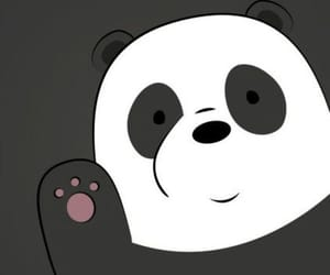 panda, wallpaper, and bear image