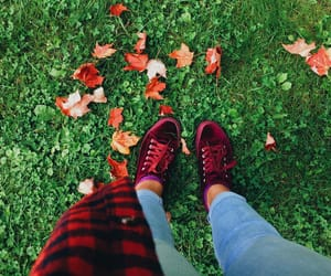 fall, flannel, and leafs image