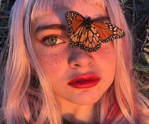butterfly, aesthetic, and girl image