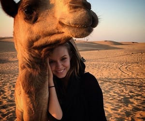 animal, camel, and girl image