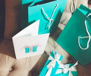 bags, fashion, and tiffany & co image