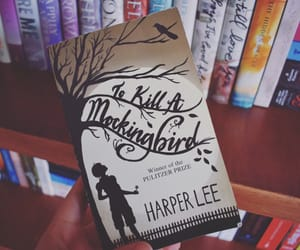 book, bookworm, and Harper Lee image