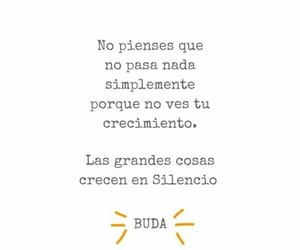 buda, frases, and phrases image