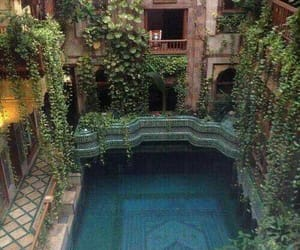 pool, travel, and plants image