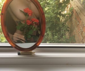 body, rose, and flower image
