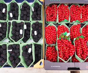 amsterdam, berries, and blackberry image