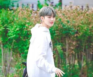 gray hair, the boyz, and hyunjoon image