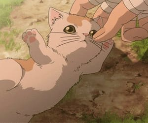 anime, hand, and kitten image