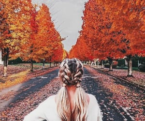 aesthetic, braids, and fall image