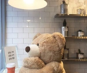 aesthetic, bear, and soft image