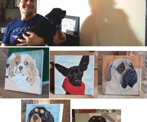 dogs, pet portrait, and dog illustration image