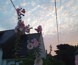 flowers, house, and sky image