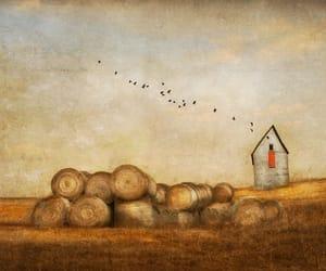 barn, dale, and horizon image