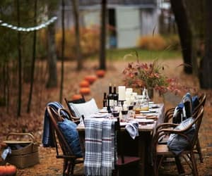 autumn, fall, and dinner image