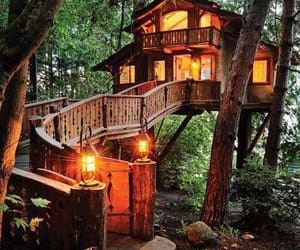 cute and tree house image