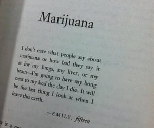 marijuana, weed, and book image
