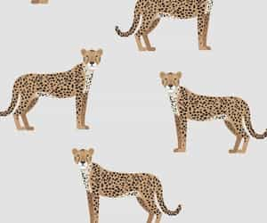 background, cheetah, and pattern image