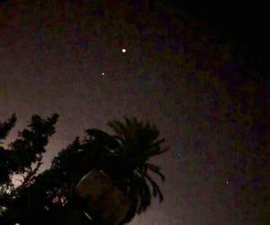 dark, palm tree, and stars image