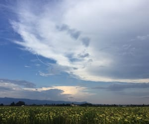 alone, campagne, and clouds image