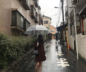 aesthetic, korean, and rain image