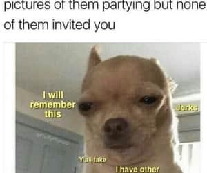 meme partying image