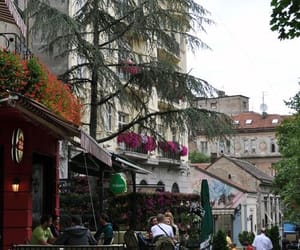 beautiful, Serbia, and street image