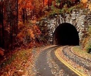autumn, landscape, and nature image