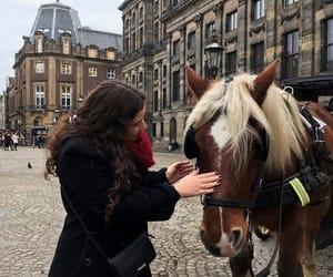 amsterdam, capture, and explore image