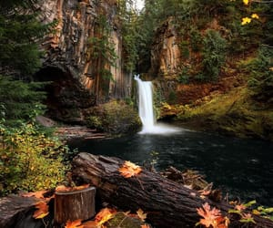 oregon and toketee falls image