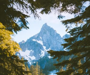 forest, mountains, and hiking image