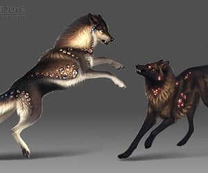 wolves and areot image