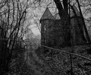 cold, gothic, and old house image