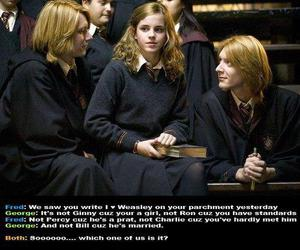 funny, weasley, and harry potter image