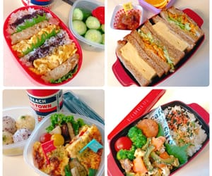 lunch, お弁当, and boxlunch image