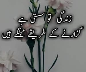 well said, harsh reality, and urdu words image
