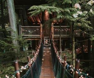 aesthetic, bridge, and green image